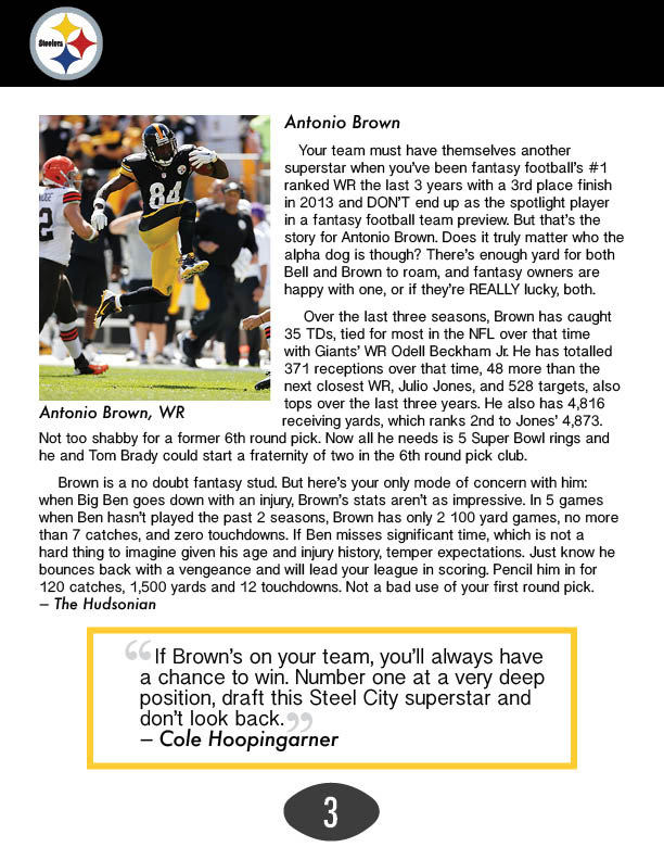 Steelers Recap4